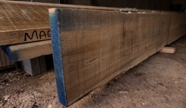 poplar boards